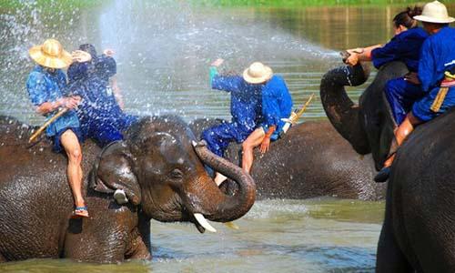 elefant hospital hua hin